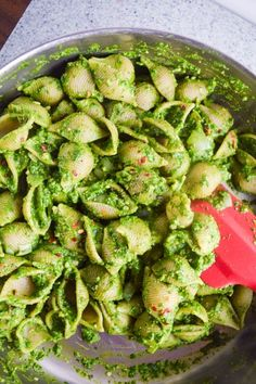 Easy, healthy spring recipe for vegan spinach pesto pasta, made with cashews, fresh basil, and lemon, folded into shell pasta.