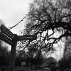 Alexandra Park - London
