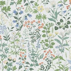 The wallpaper Flora - 5475 from Boråstapeter is wallpaper with the dimensions m x m. The wallpaper Flora - 5475 belongs to the popular wallpaper colle Wallpaper Paste, New Wallpaper, Pattern Wallpaper, Pattern Illustration, Botanical Illustration, Beddinge, Fabric Design, Pattern Design, Surface Design