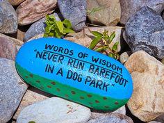 #WordsofWisdom - Dog Park by Colleen Kammerer #humor #funny