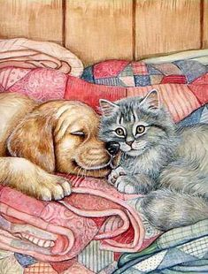 Art of Debbie Cook Animals And Pets, Baby Animals, Cute Animals, Animal Pictures, Cute Pictures, Graffiti Kunst, Art Mignon, Illustrations, Animal Paintings