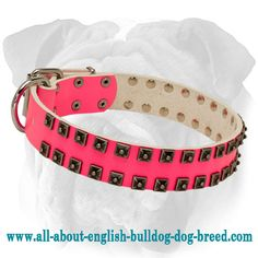 Fashion Pink #Leather #Collar Decorated with Old Nickel Studs $59.90 | www.all-about-english-bulldog-dog-breed.com