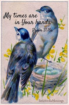 Little Birdie Blessings : My Times are in His Hands.  Psalm 31:15.  Free for personal use or sharing.
