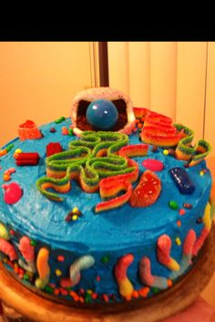My A/P cell cake with candy organelles...