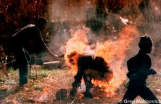 """Kevin Carter was the first photographer to take images of the """"necklacing"""" in South Africa in the mid Kevin Carter, Bang Bang, New York Times, African National Congress, Jamel, Human Torch, Win Prizes, Iconic Photos, The Victim"""