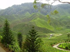Image detail for -Beautiful Scenery - Malaysia