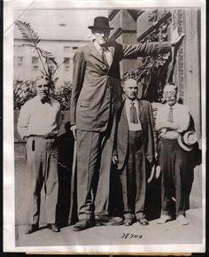 Bernard Coyne - 8 feet 2 inches