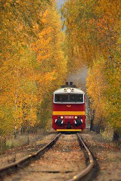 Brejlovec Locomotive, Techno, Diesel, Transportation, Country Roads, Photography, Travel, Vehicles, Beauty