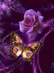 Butterfly and violet open rose