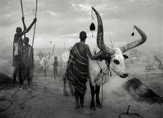 El documental `La Sal de la Tierra´, un tributo al trabajo del fotógrafo Sebastiao Salgado | SoyRural.es