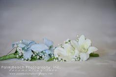 Palm Beach Photography, Inc. www.palmbeachphotography.net www.facebook.com/palmbeachphoto Palm Beach Photography Florida Keys Wedding Photography Cheeca Lodge & Spa Wedding #palmbeachphotography #floridakeysweddingphotography #cheecalodgewedding