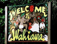 Wahiawa, Oahu, HI - Imua Leilehua!!! Imua!!  Represent!!!