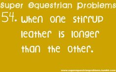 Super Equestrian Problems : 3 of 7 really irritating....