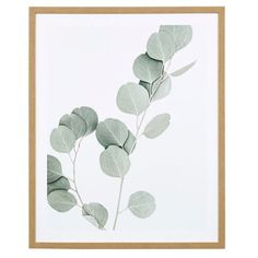 The EUCALYPTUS I Framed Print 64 X in is part of freedom's range of contemporary furniture and homewares and is available to shop now. Freedom Logo, Freedom Tattoos, Symbols Of Freedom, Freedom Design, Freedom Artwork, Freedom Drawing, Freedom Images, Freedom Pictures, Joseph Eichler