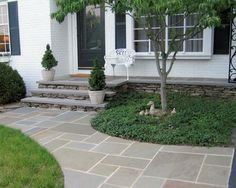64 Ideas For Curved Patio Steps Walks Front Walkway Landscaping, Front Yard Walkway, Front Porch Steps, Backyard Walkway, Flagstone Walkway, Walkway Ideas, Landscaping Ideas, Driveway Gate, Fence Ideas