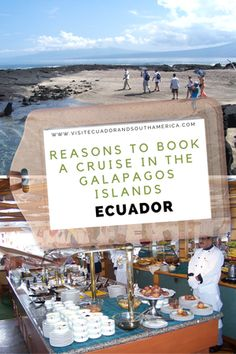 Book your cruise to this unique destination, located 1000 km away from the Ecuadorian coastline. The most visited destination in Ecuador. Galapagos Islands Ecuador, Island Cruises, How To Book A Cruise, Spanish Speaking Countries, South America, Latin America, Close Encounters, Just Dream, How To Speak Spanish