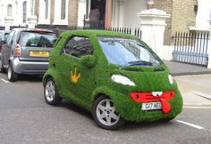 Genius brand signal for Easigrass - the artificial grass company