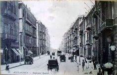 Saad Zaghloul Street - Alexandria 1908 Rare Photos, Old Photos, Ancient Egypt History, Alexandria Egypt, Old Egypt, Urban Life, Black And White Photography, Egyptian, Donkey