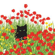 black cat in poppies decorative napkins . Soft 3 – ply paper, naturally bleached, without chlorine. Made in Germany cocktail napkins X 20 napkins w/resealable opening luncheon napkins x 20 napkins w/resealable opening Gato Anime, Decorative Napkins, Black Cat Art, Cat Flowers, Cat Shedding, Curious Creatures, Cat Drawing, Poppies, Art Projects