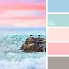 Image result for i want to get colours palette for photo