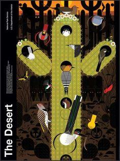 The Desert | U.S. National Park Service ~ Stunning poster by renowned artist Charley Harper explores the abundance & variety of life inhabiting American deserts. The original painting was commissioned by the U.S. National Park Service in 1986. #art #contemporary