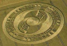 Terrestrial Crop Circles