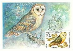 Our goal is to keep old friends, ex-classmates, neighbors and colleagues in touch. Postage Stamps, Old Friends, Owl, Birds, Postcards, Animals, Animales, Animaux, Owls