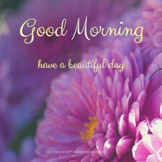 ✔ Good Morning! Have a beautiful day.