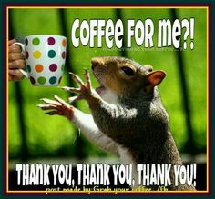 Coffee for all the woodland creatures!!!!