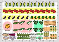 Garden Plan - 2013: Pats