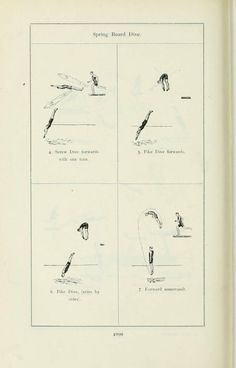 Official report of the Olympic Games of Stockholm 1912