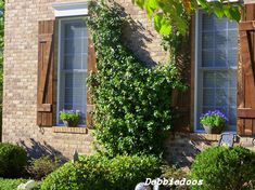 Custom wood shutters - traditional - exterior - charlotte - (Debbiedoo's, Houzz)