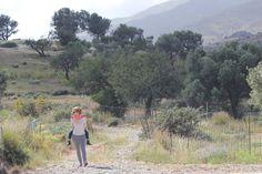 Wandeling rond Agia Galini