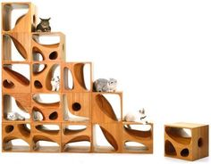 Modular Wood Furniture for Cats