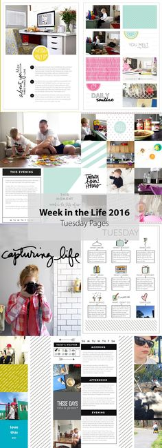 Week in the Life 201