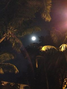 Aum Home Shala in Coconut Grove, FL