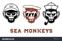 The image monkeys portraits in the sailor hat. T-short design template.  Vector illustration.