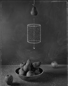 Where Fruit Comes From -- John Chervinsky