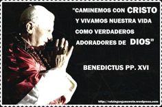 """""""CAMINEMOS CON CRISTO Y VIVAMOS NUESTRA VIDA COMO VERDADEROS ADORADORES DE DIOS""""  VIAJE APOSTÓLICO A COLONIA CON MOTIVO DE LA XX JORNADA MUNDIAL DE LA JUVENTUD"""