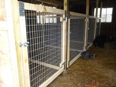 How To Raise Goats: Natural Goat Care for Meat, Milk and Profits in Your Backyard - Tools And Tricks Club Breeding Goats, Farm Sales, Small Goat, Goat Pen, Building A Pole Barn, Mini Cows, Mini Barn, Goat Care, Farm Lifestyle