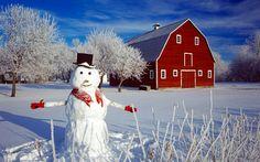 I Love Winter, Winter Snow, Winter Art, Country Barns, Country Houses, Barn Art, Build A Snowman, Farm Barn, Red Barns