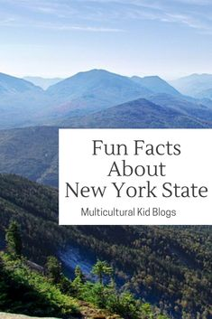 Fun Facts About New York State