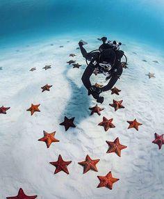 Bimini Island Bahamas Photo by: @scubapro #TravelingOurPlanet to be featured! by travelingourplanet