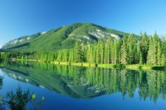 Earth Reflection  Forest Lake Landscape Banff National Park Canada Mountain Tree Wallpaper