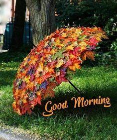 Deco Floral, Easy Garden, Veg Garden, Upcycled Garden, Garden Tips, Indoor Garden, Garden Crafts, Spring Garden, Autumn Garden
