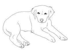Rottweiler Puppy | favorite Dog Colouring pages | Dog ...