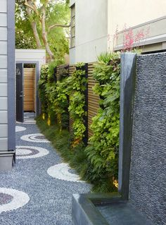 Green walls warm up the side alley in a San Francisco landscape designed by Monica Viarengo modern garden Mission Accomplished: A Modern Mosaic Garden in SF, by Monica Viarengo Modern Landscape Design, Modern Garden Design, Modern Landscaping, Backyard Landscaping, Landscaping Ideas, Backyard Ideas, Walkway Ideas, Fence Ideas, Patio Ideas