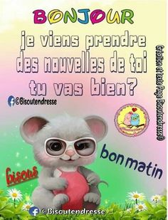 French Quotes, Teddy Bear, Messages, Claire, Gifs, Animals, Facebook, Rose, Good Mood