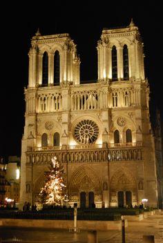 Notre Dame. París, enero 2008