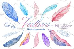 Hand drawn Feathers by Eisfrei on @creativemarket